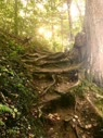 Natural Staircase in the Pictured Rocks National Lakeshore, MI [OC] [3264x2448] - drewjsph02