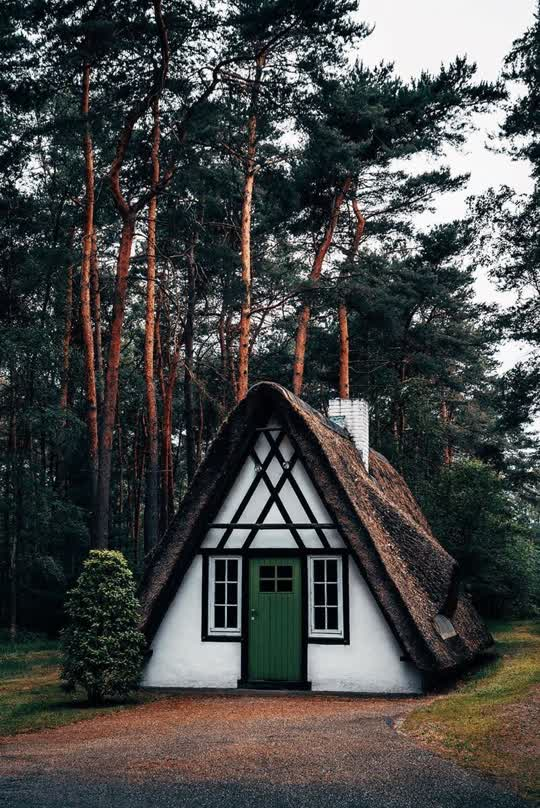 """""""""""Untitled"""" by 